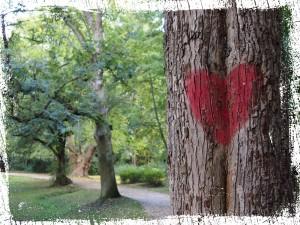 Baum mit Herz & Seele