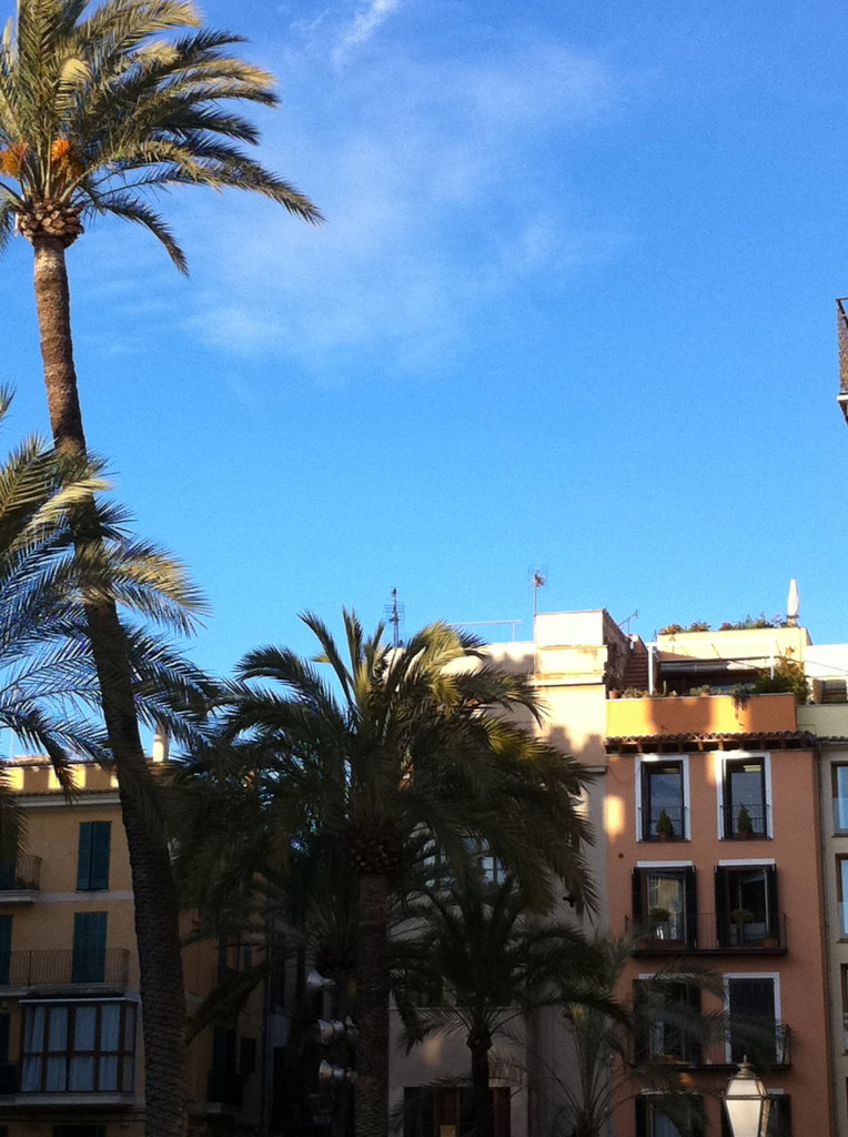 Angekommen in Palma