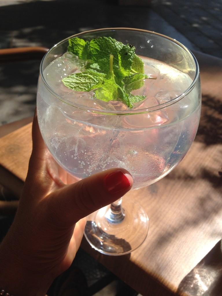 Der pefekte Gin Tonc im Ginbo
