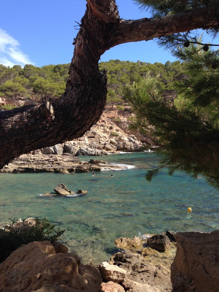 Umgebung vom Cala Conills