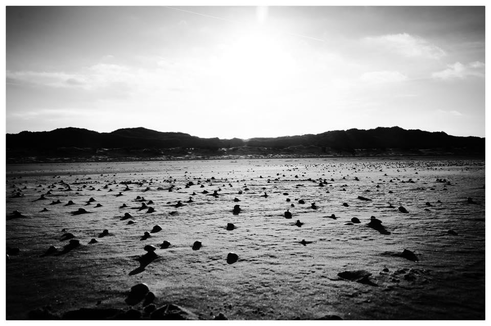 Johannes Korten und das Meer 4