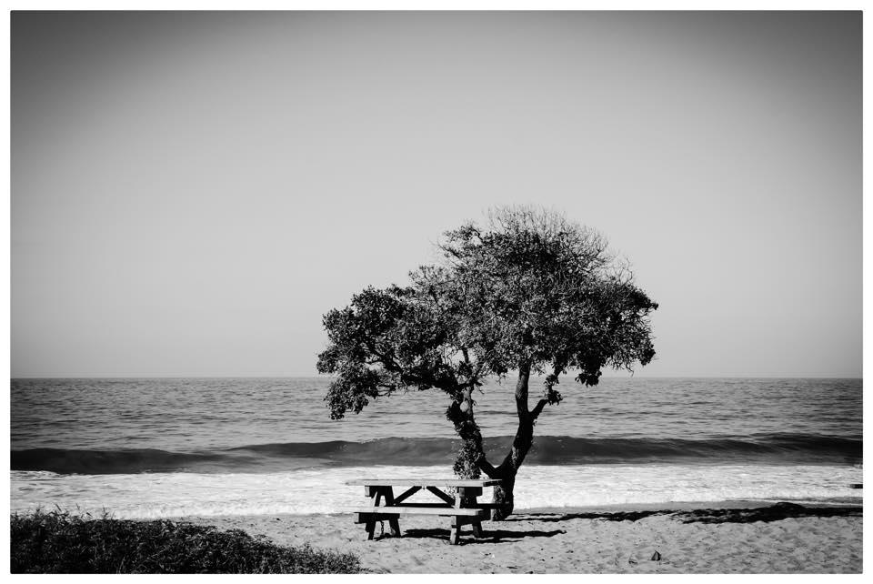 Johannes Korten und das Meer 2