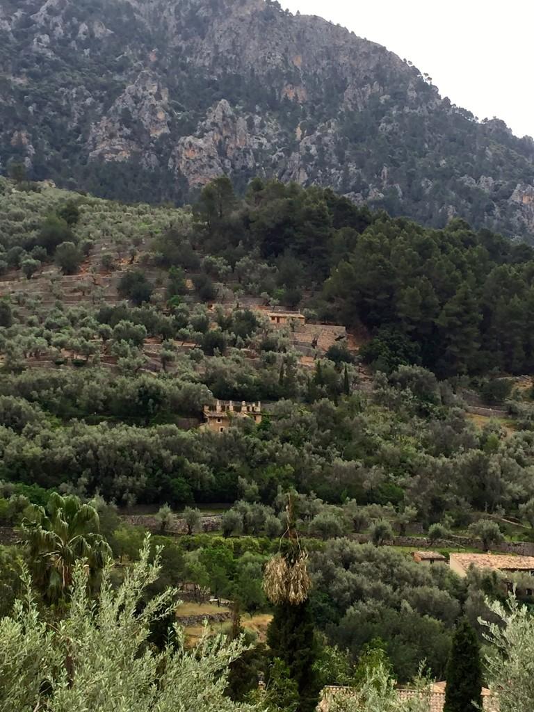 Auf dem Weg nach Fornalutx auf Mallorca