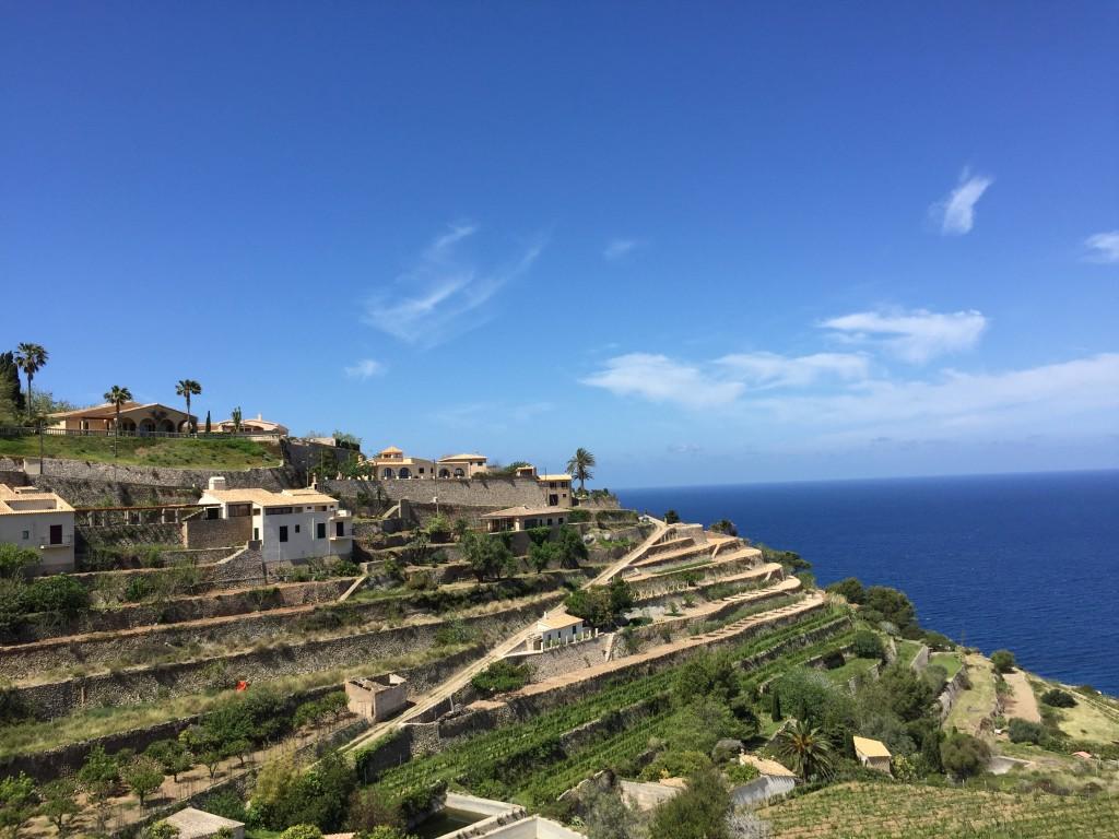 Die Terrassen von Banyalbufar, Mallorca422