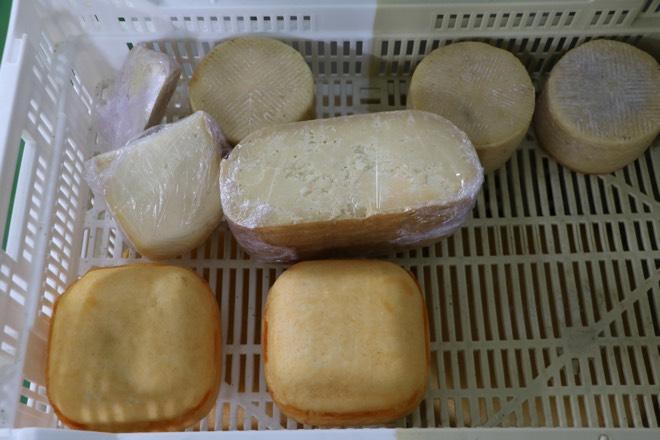 Käse bei Formatges Burguera