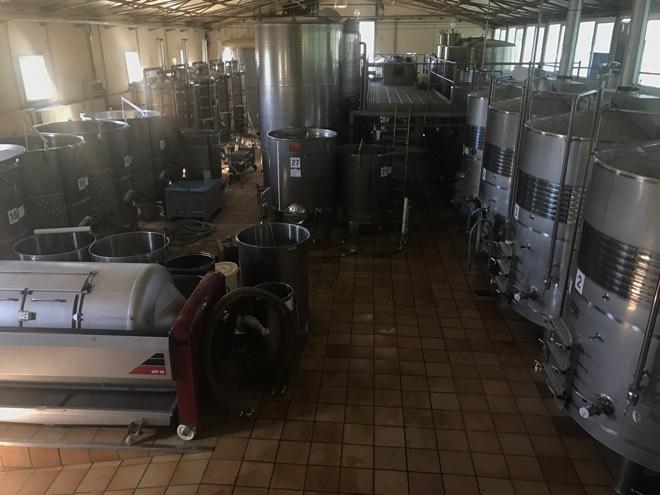 Die Produktion bei Castell Miquel