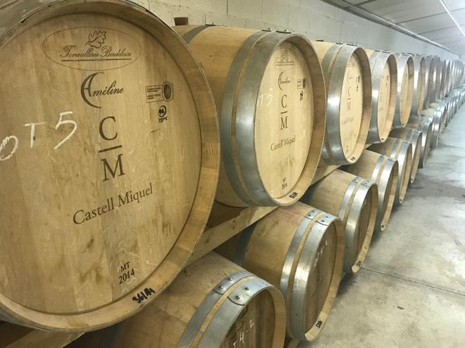 Weinfässer bei Castell Miquel