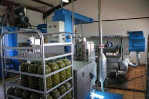 Produktion Olivenöl bei Sa Tafona
