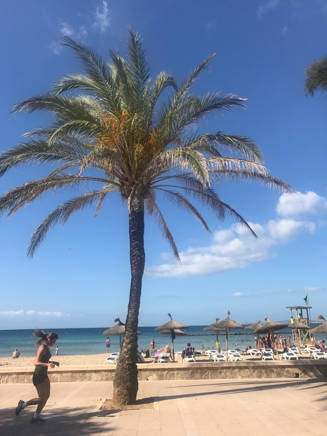 Strand Ciudad Jardin Mallorca