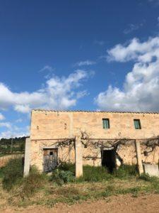 Weinfeld Sineu Mallorca