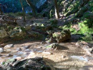 Wasserlauf kurz vor Es Salt des Freu