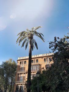 Yoga in Palma de Mallorca