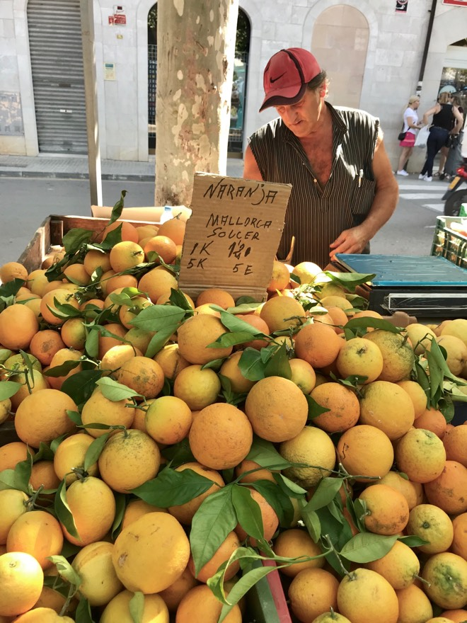 Orange auf dem Markt in Santa Maria auf Mallorca