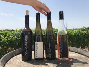 Weingut Son Campaner auf Mallorca