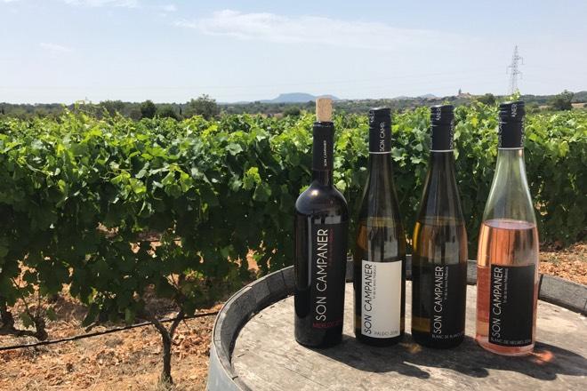 Weingut Son Campaner Mallorca