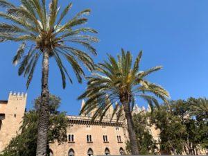 Achtsamer Spaziergang mit Mindful Mallorca