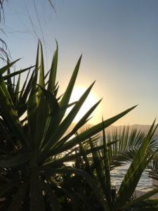 Ausblick Almare Mallorca