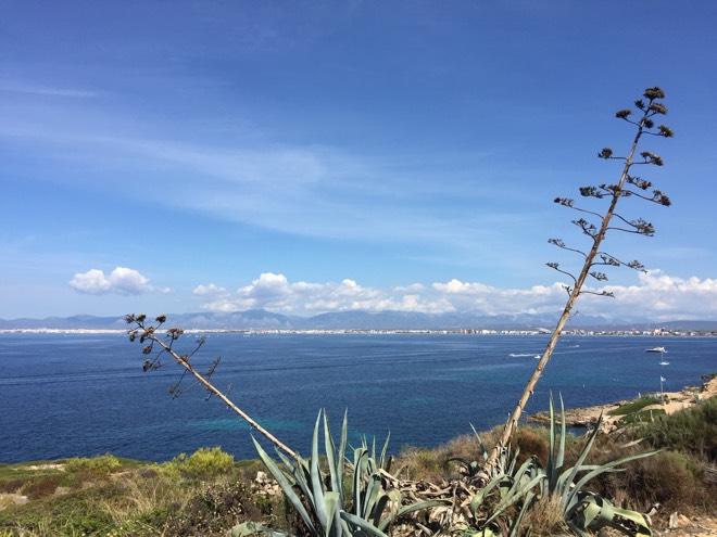 Cap Rocat Mallorca Ausblick