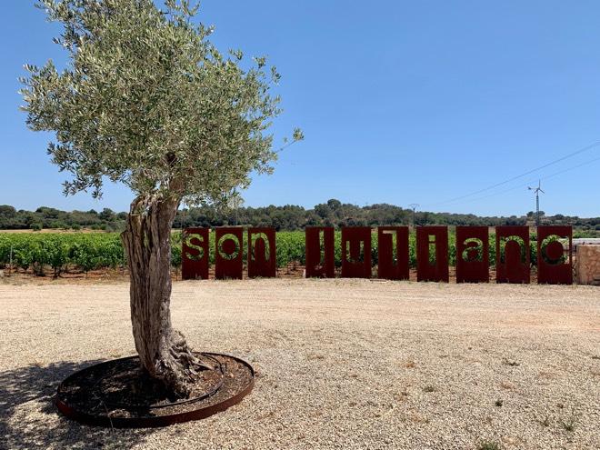 Weingut Son Juliana auf Mallorca