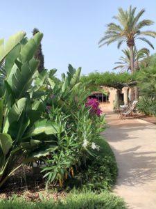 Cal Reiet Holisitc Retreat Mallorca