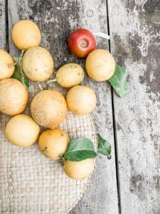 Frische Zitronen von Mallorca