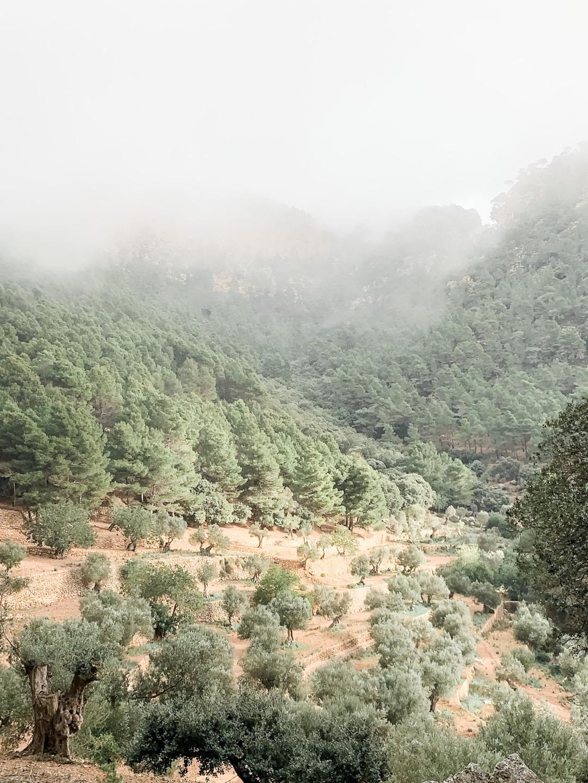 Son Moragues in der Serra de Tramuntana