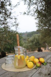 Selbstgemavhte Zitronenlimonade auf Son Moragues
