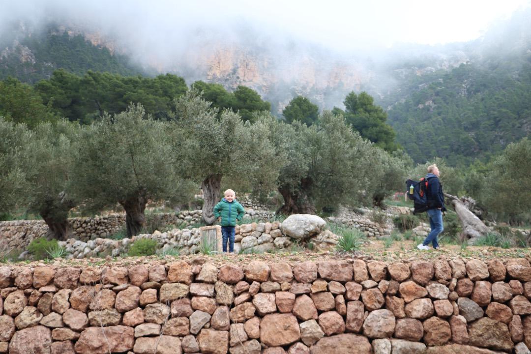 Ausflug für die ganze Familie auf Son Moragues Mallorca