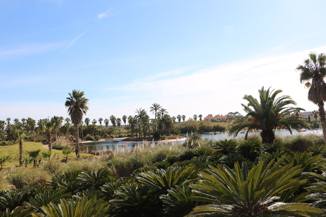 See im Botanicactus auf Mallorca