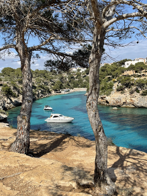 Klippen Cala Pi Mallorca