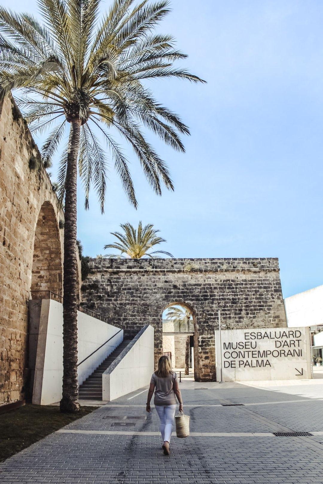 Mallorca ohne Mietwagen entdecken mit dem EMT Palma