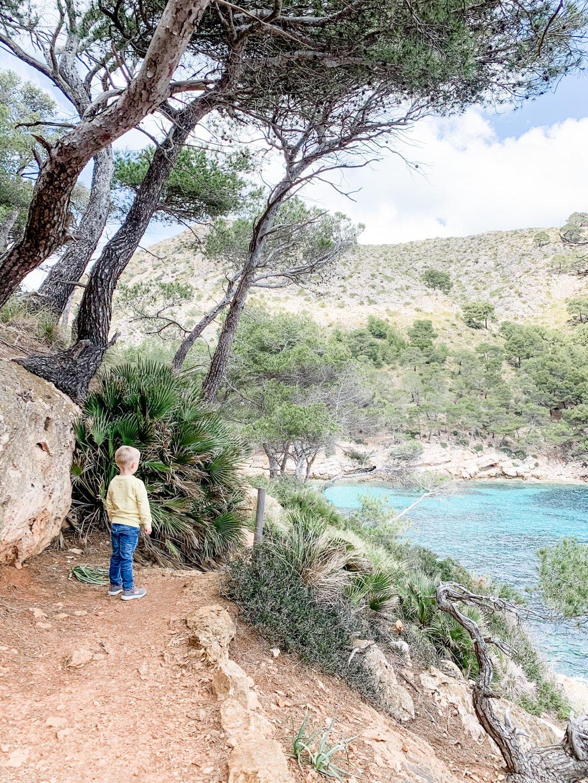 Blick auf die Cala Murta auf Mallorca