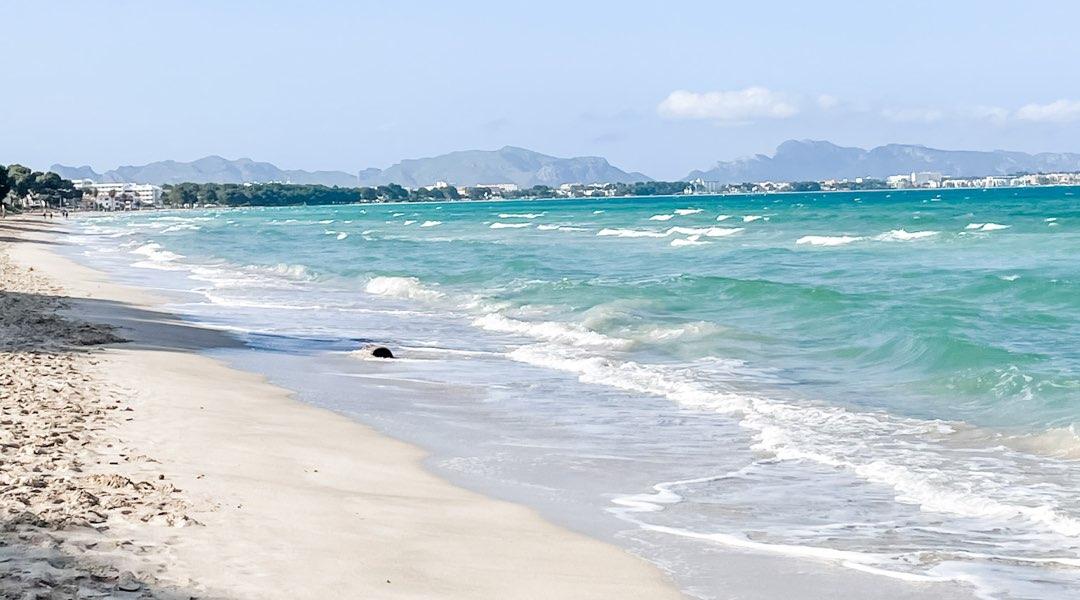 Plastikverbot auf Mallorca 2021