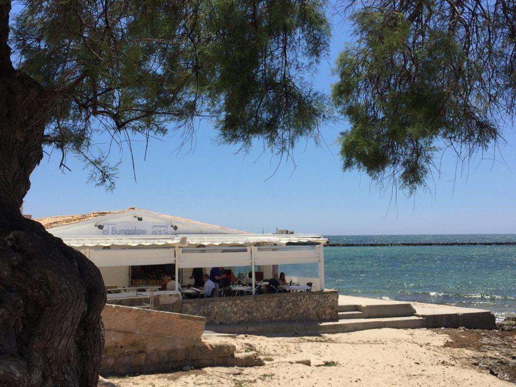 Die beste paella auf mallorca im restaurante el bungalow for Restaurante jardin mallorca
