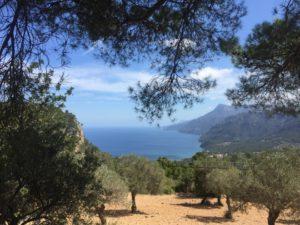 an Mallorcas Küste im Westen