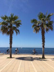 Rückblick auf 2016 Portixol Mallorca