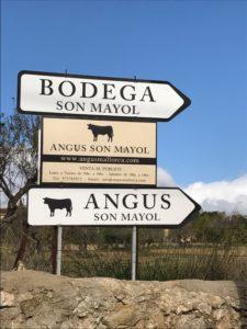 Angus Son Mayol Mallorca