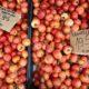 Tomaten und mehr auf dem Wochenmarkt in Binissalem auf Mallorca